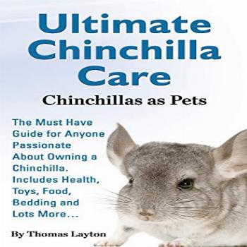 Ultimate Chinchilla Care Chinchillas as Pets the Must Have