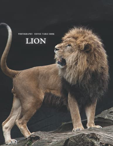 Lion Photography Coffee Table Book For Relaxing ,